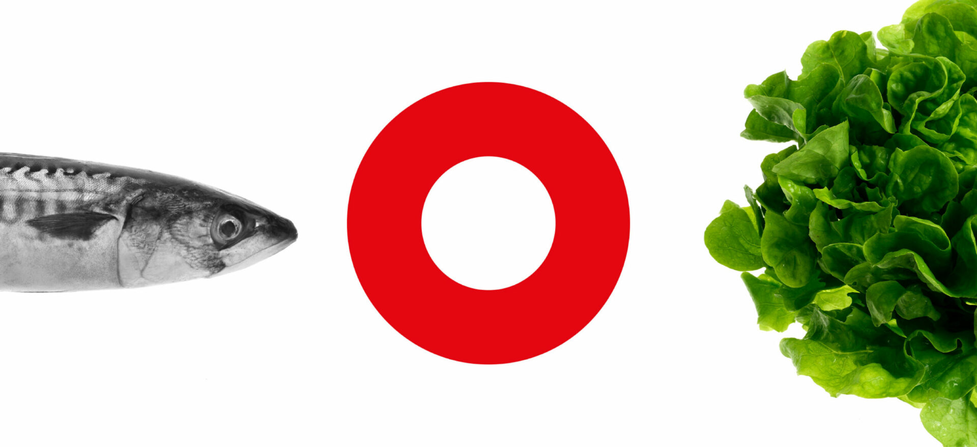 Graphic & Interior Design | Branding | Coop Italia| Mario Trimarchi Design | Fragile