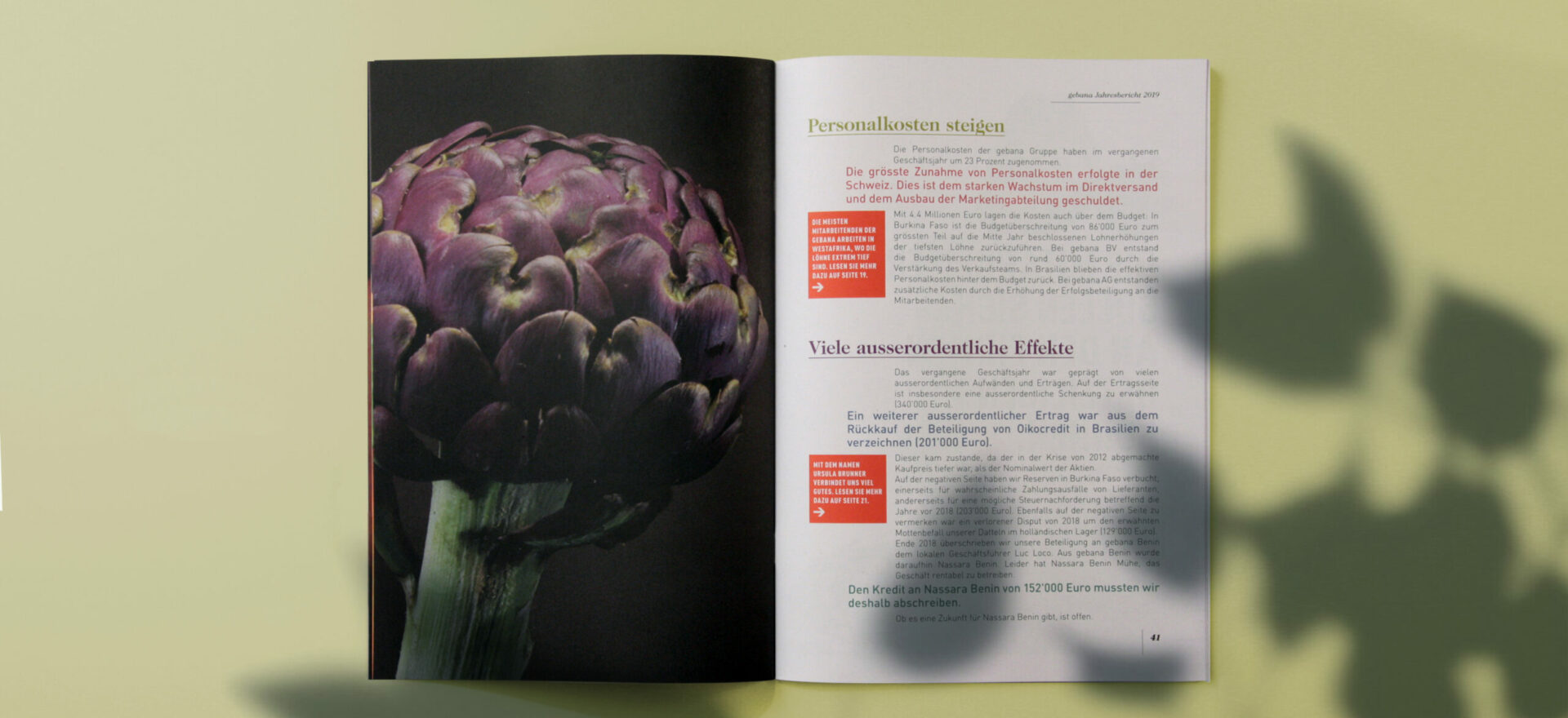 Open Catalogue for Gebana showing details of typography, titles, images and texts detailing composition of the Catalogue in a light green background.