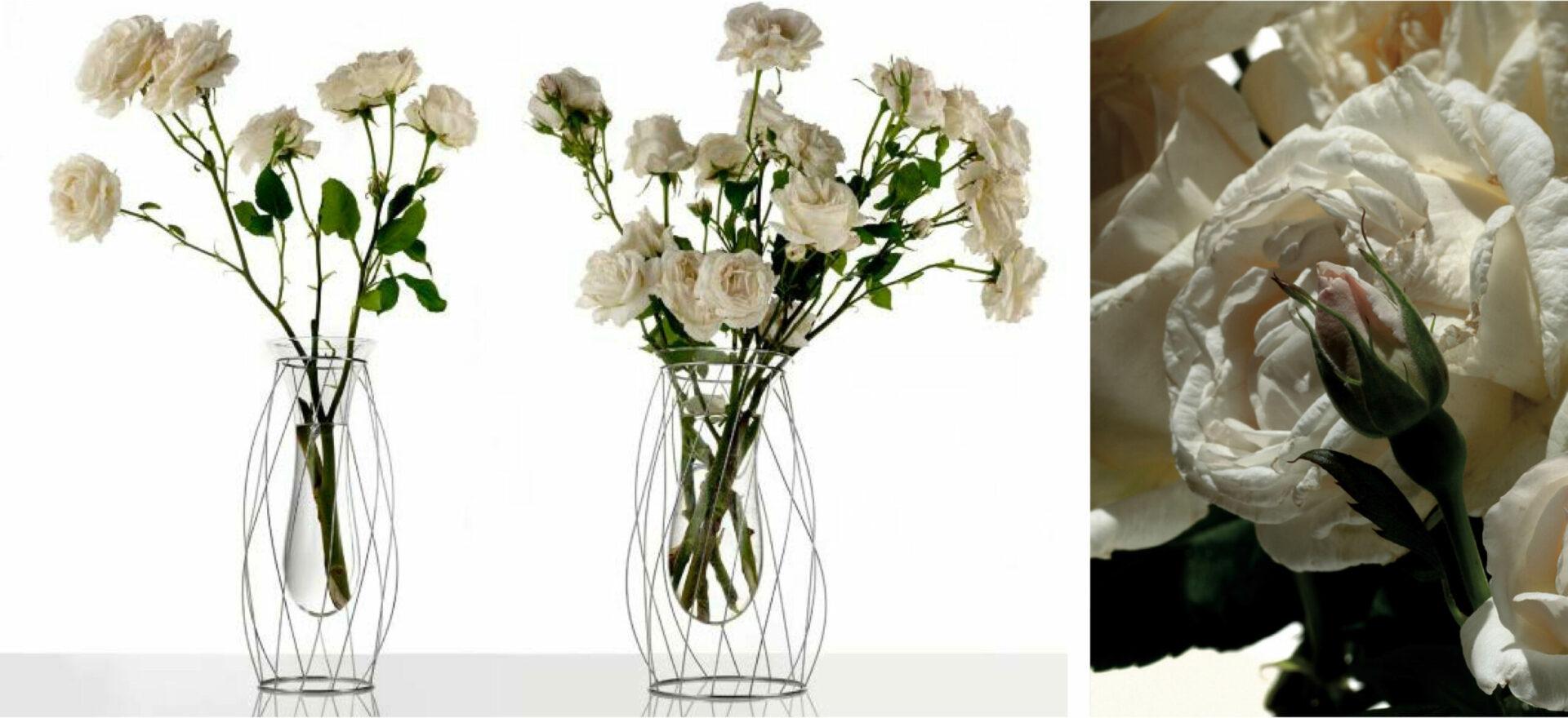 Intanto | Flower vases | Product Design | Alessi | Mario Trimarchi Design