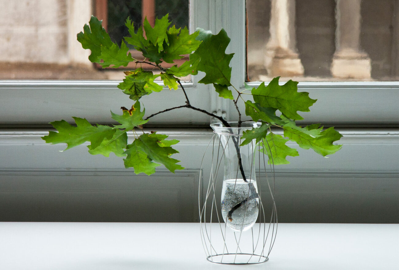 Intanto_Alessi_Flower vases_Window_Mario Trimarchi Design_Products Artworks
