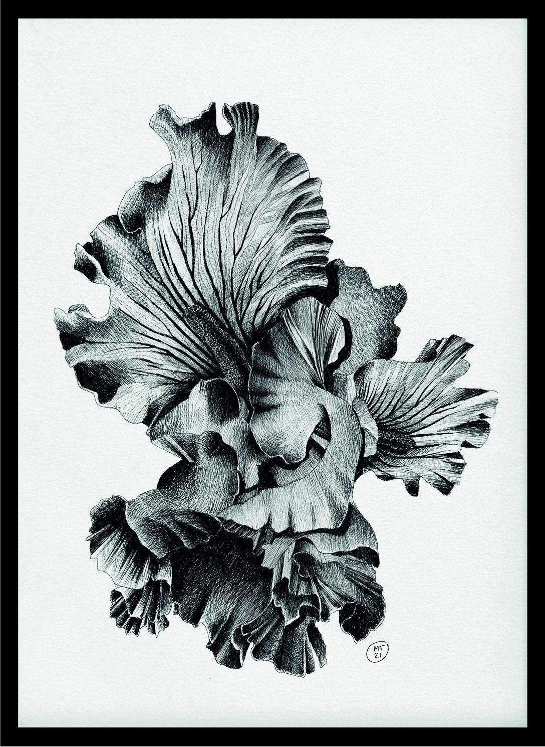 Iris_Poster_Ink on Paper_Mario Trimarchi Design4
