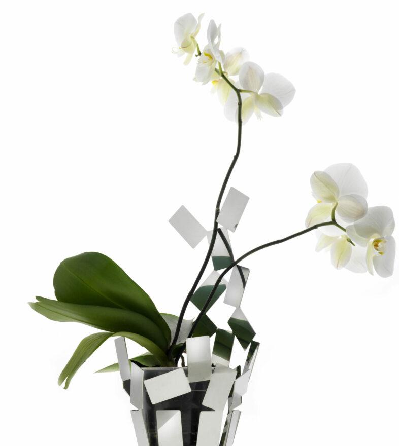 La Stanza dello Scirocco | Product Design | Flower Pot | Alessi | Mario Trimarchi Design | Ph Santi Caleca