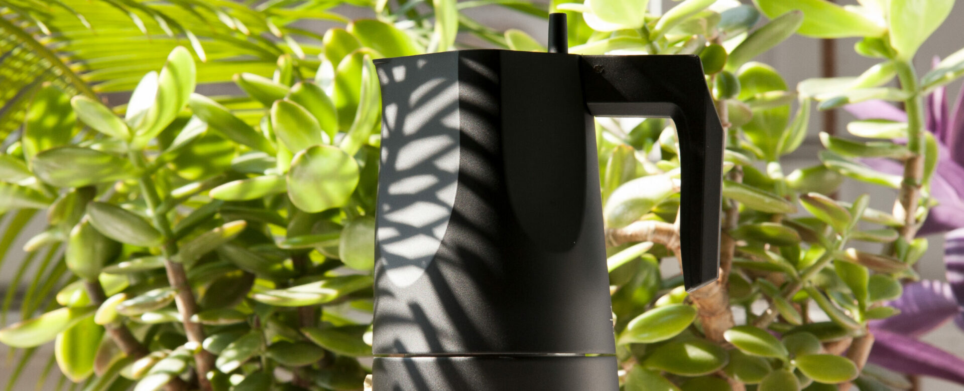 Left side photo of Ossidiana Expresso Coffee maker for Alessi. The model presented in the picture is in aluminium casting painted in black with handle in thermoplastic black resin, showing the details of its form inspired in the stone arrowheads handmade by natives. The background is filled with a blurred plant.