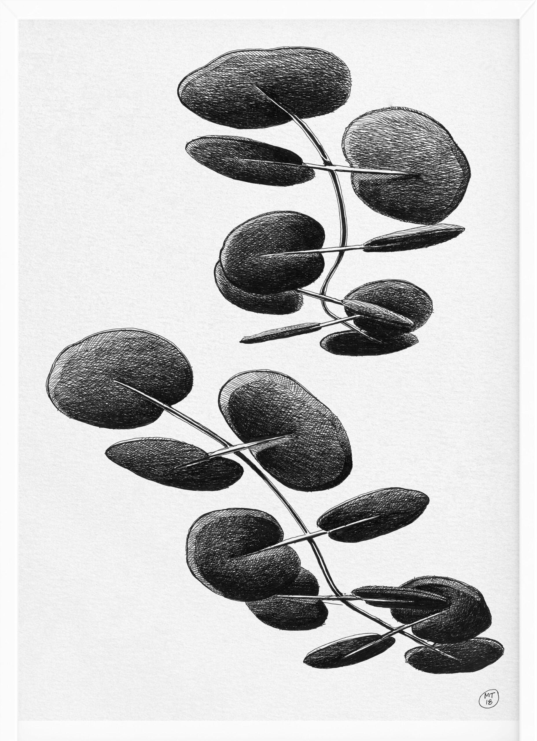 Radical | Drawings | Mario Trimarchi Design9
