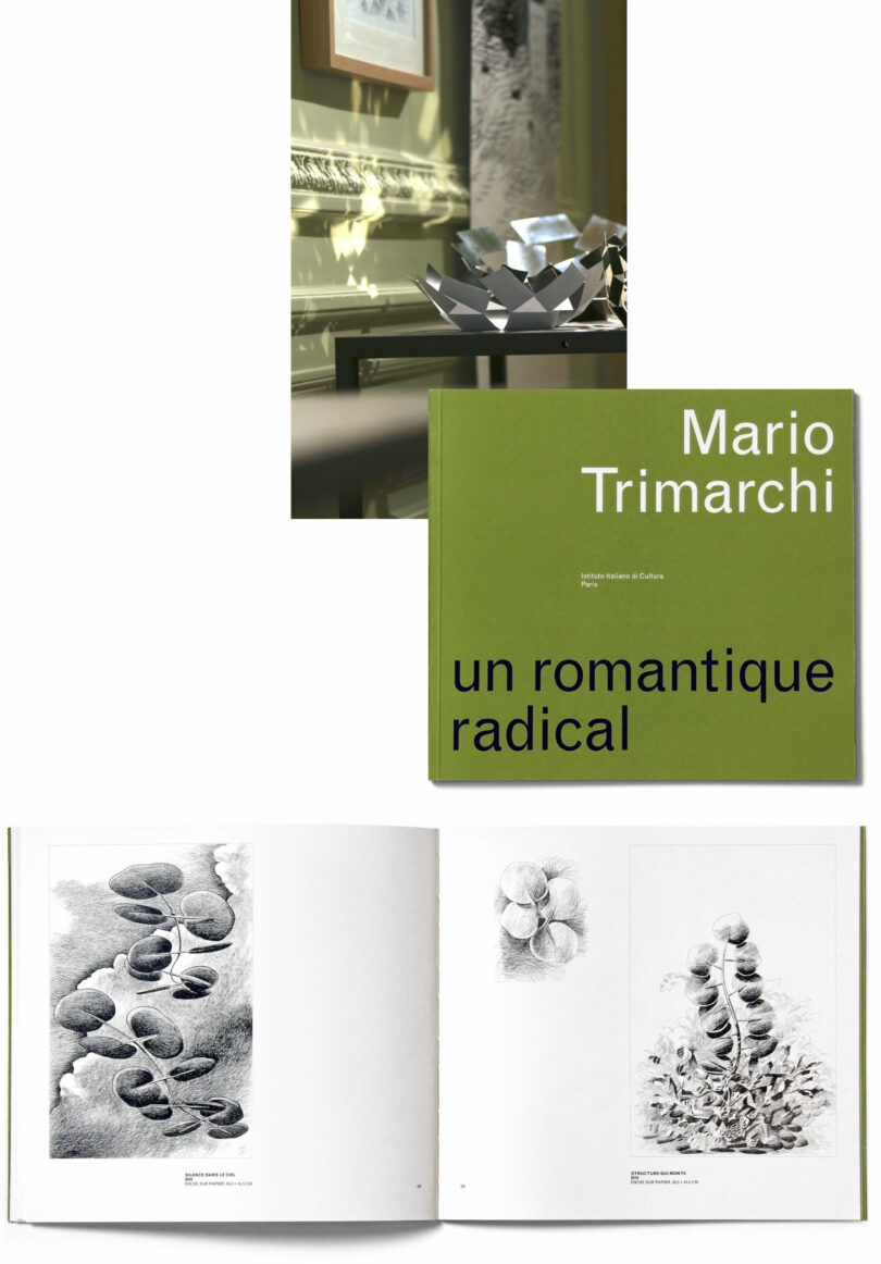 """La Stanza dello Scirocco fruit bowl in Instituto Italiano di Cultura Paris as part of the Radical Exhibition on a table. Pcitures of Mario Trimarchi's book """"Un romantique radical"""" showing cover and inside showing Botanica sound absorving panels."""
