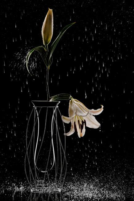 Rain | Intanto | Thinking & Drawing | Mario Trimarchi Design