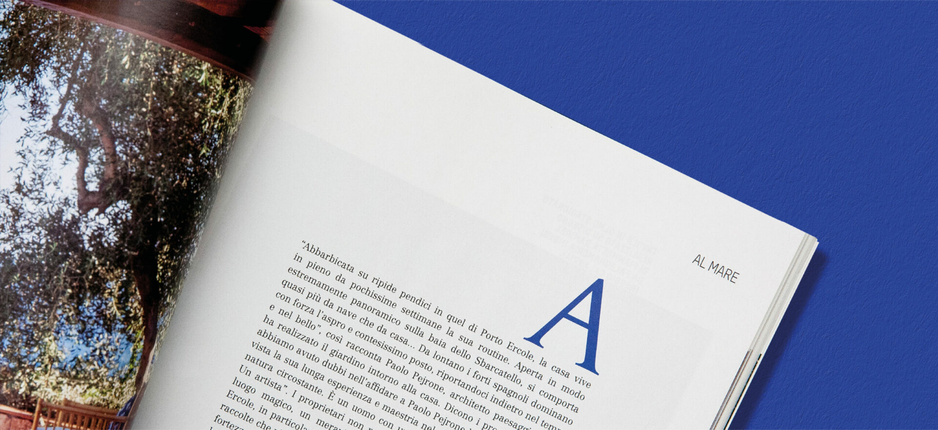 Close up photo of an opened Ville Giardini Magazine showing detail of the typography and composition of text and images used in the project of the Art Direction and Graphic Design for Visibilia Editore in a blue background.