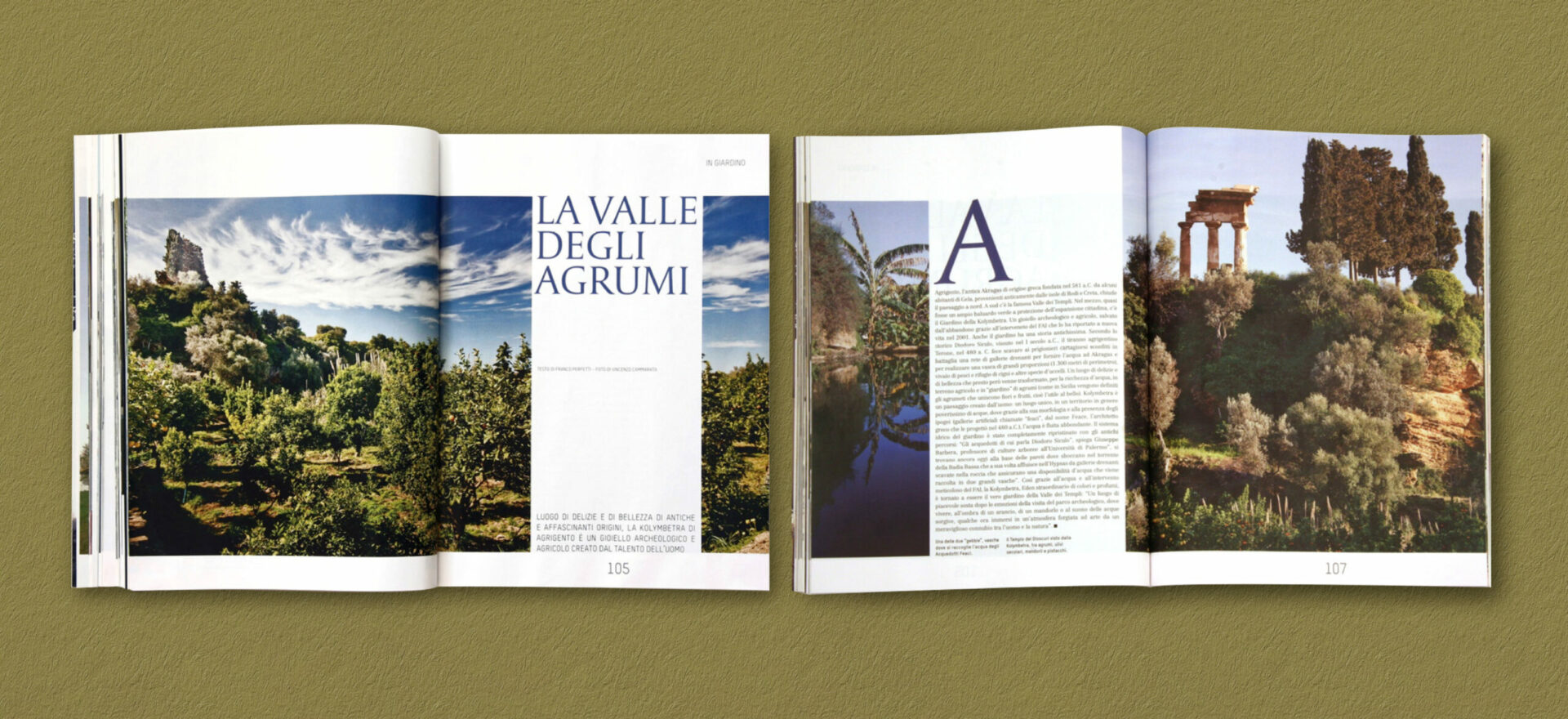 Two opened Ville Giardini magazines showing details of the typographies and compositions of text and images used in the project of the Art Direction and Graphic Design for Visibilia Editore in a brownish yellow background.